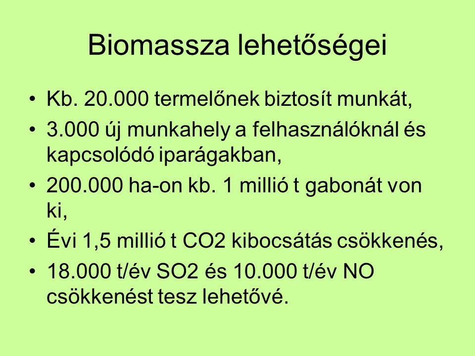 Biomassza lehetőségei •Kb.
