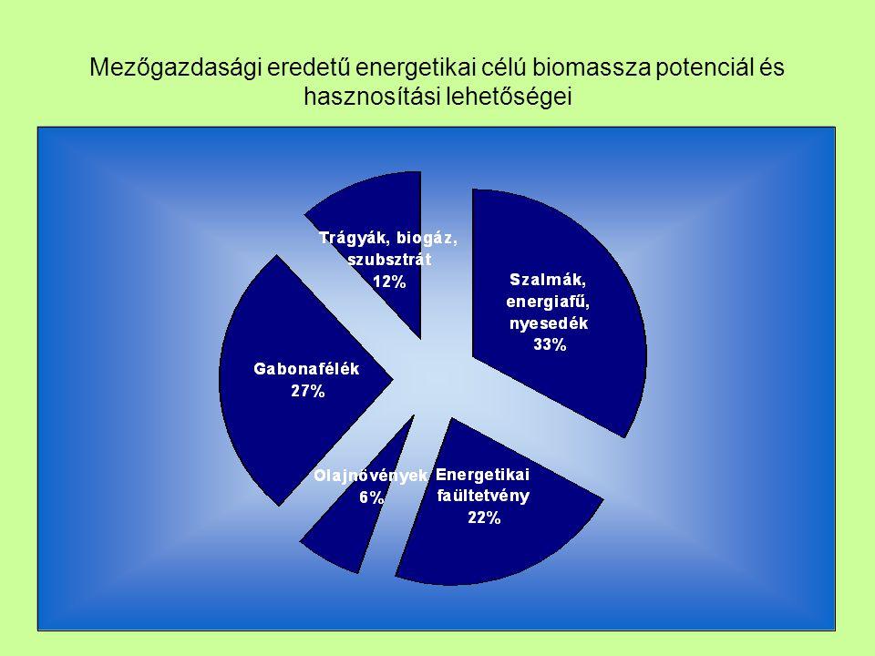Ipari célra termelt gabona és olajosmagvakból előállítható bio-motorhajtóanyagok mennyisége (Et) BúzaKukoricaNapra- forgó Repce Termés min.4,7007,200950220 Termés max.6,00085001,250460 Motor célú Min.600120050220 Motor célú Max.18002000200460 Bioethanol Min.215420-- Bioethanol Max.640690-- Biodízel Min.--2377 Biodízel Max.--90160