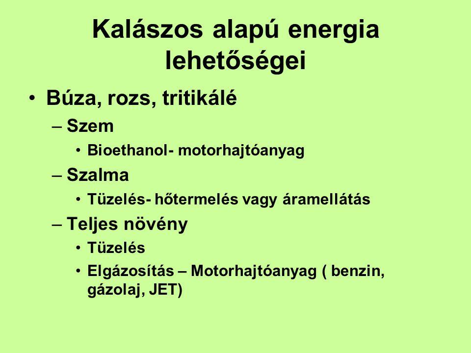 Kalászos alapú energia lehetőségei •Búza, rozs, tritikálé –Szem •Bioethanol- motorhajtóanyag –Szalma •Tüzelés- hőtermelés vagy áramellátás –Teljes növény •Tüzelés •Elgázosítás – Motorhajtóanyag ( benzin, gázolaj, JET)