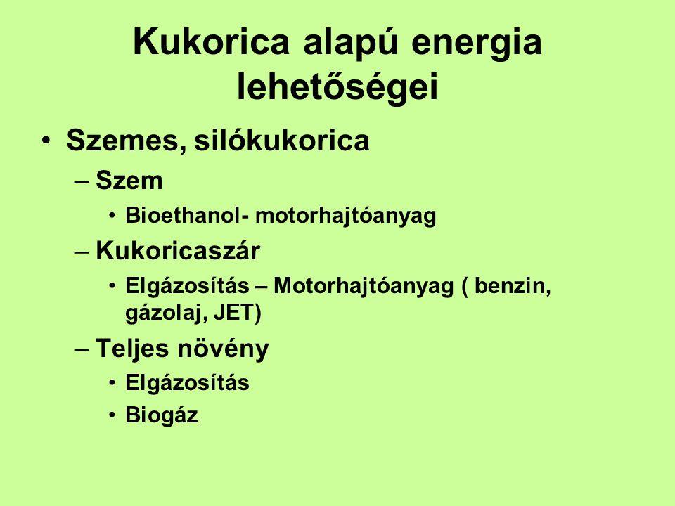 Kukorica alapú energia lehetőségei •Szemes, silókukorica –Szem •Bioethanol- motorhajtóanyag –Kukoricaszár •Elgázosítás – Motorhajtóanyag ( benzin, gázolaj, JET) –Teljes növény •Elgázosítás •Biogáz