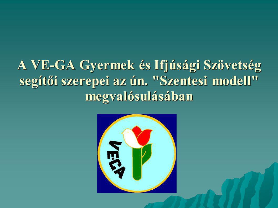 A VE-GA Gyermek és Ifjúsági Szövetség segítői szerepei az ún. Szentesi modell megvalósulásában