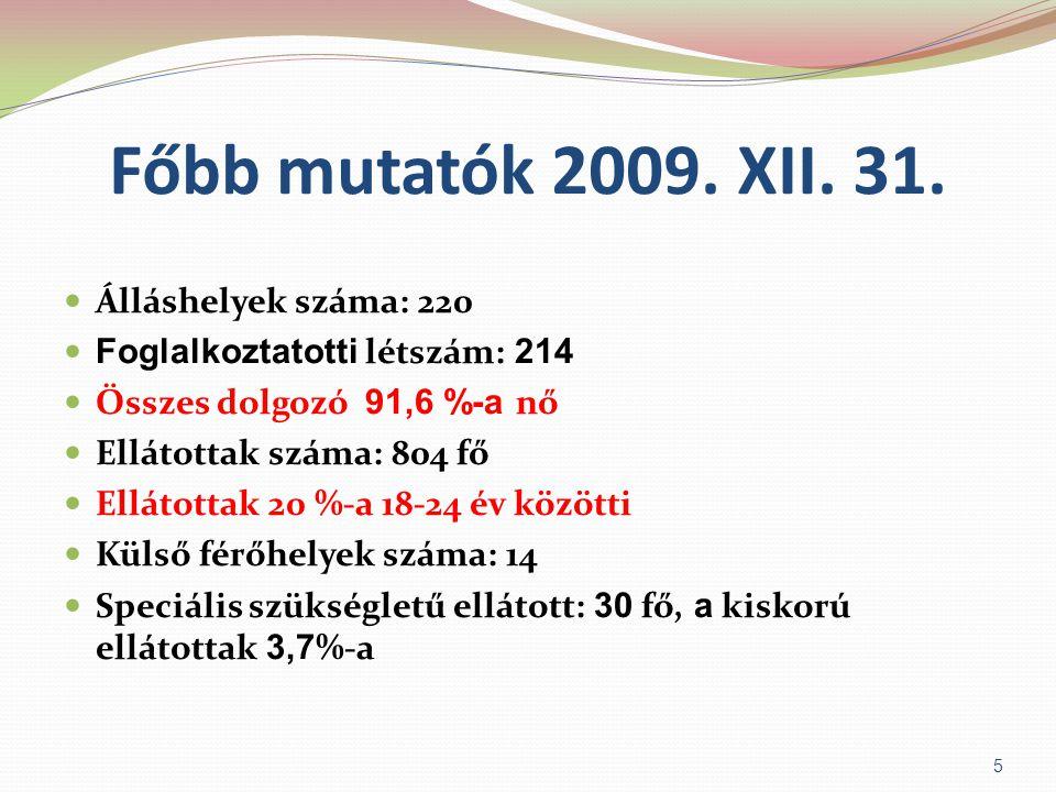 Főbb mutatók (pénzügyi)  2009.