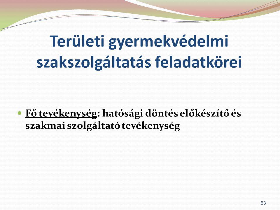 Területi gyermekvédelmi szakszolgáltatás feladatkörei  Fő tevékenység: hatósági döntés előkészítő és szakmai szolgáltató tevékenység 53