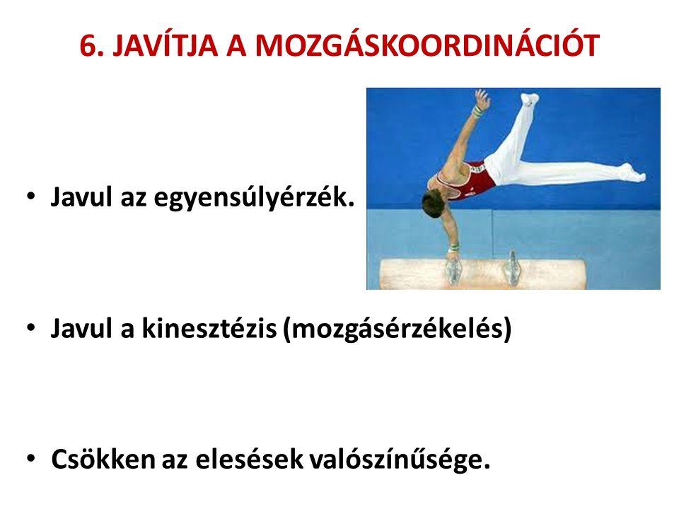 6. JAVÍTJA A MOZGÁSKOORDINÁCIÓT • Javul az egyensúlyérzék. • Javul a kinesztézis (mozgásérzékelés) • Csökken az elesések valószínűsége.