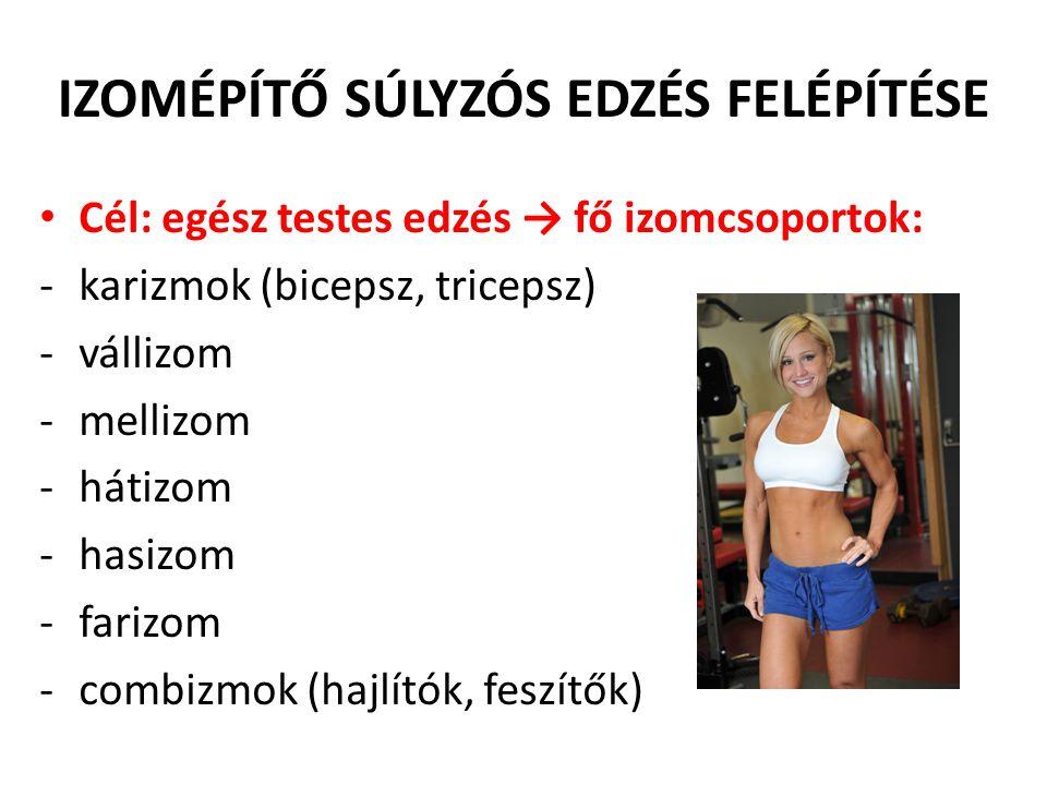 IZOMÉPÍTŐ SÚLYZÓS EDZÉS FELÉPÍTÉSE • Cél: egész testes edzés → fő izomcsoportok: -karizmok (bicepsz, tricepsz) -vállizom -mellizom -hátizom -hasizom -