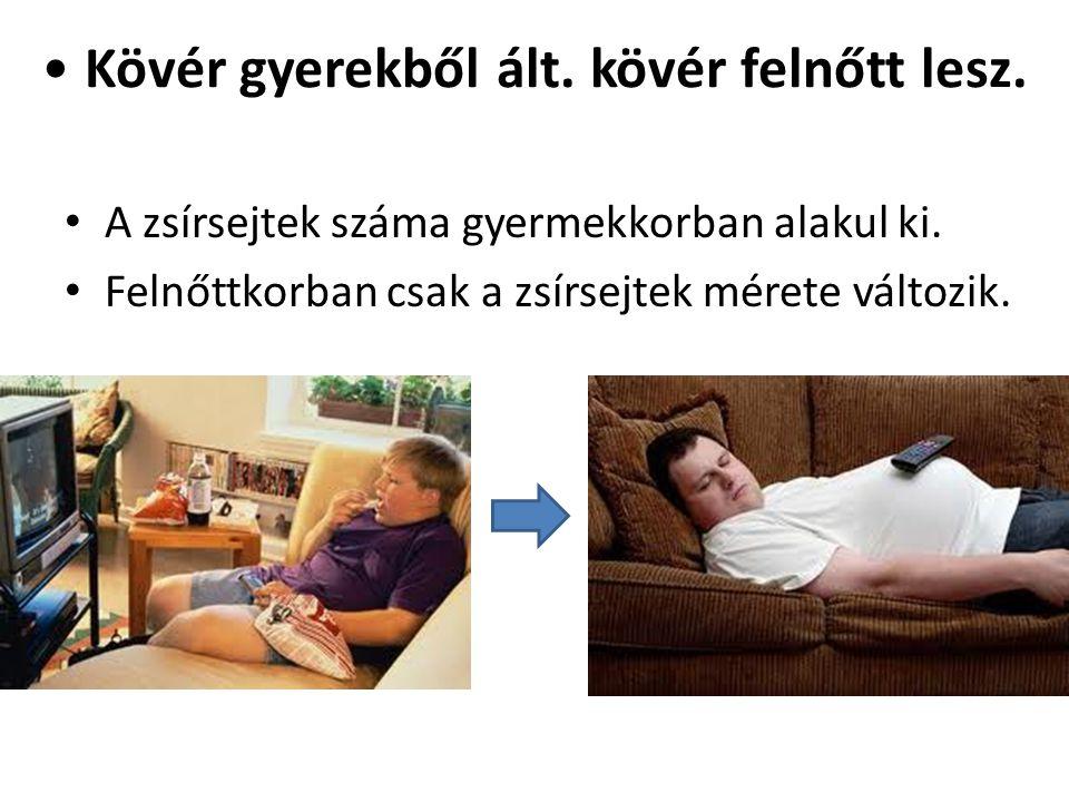 • Kövér gyerekből ált. kövér felnőtt lesz. • A zsírsejtek száma gyermekkorban alakul ki. • Felnőttkorban csak a zsírsejtek mérete változik.