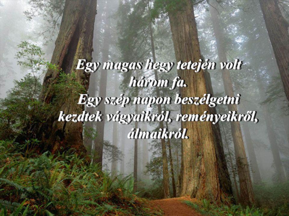 A fa rájött ennek a pillanatnak a fontosságára és megértette, hogy minden idők legnagyobb kincsét tarthatta magánál.
