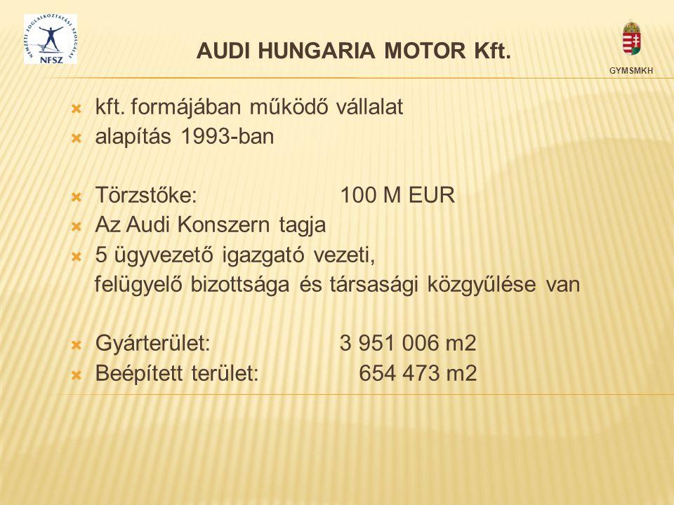 AUDI HUNGARIA MOTOR Kft.  kft. formájában működő vállalat  alapítás 1993-ban  Törzstőke: 100 M EUR  Az Audi Konszern tagja  5 ügyvezető igazgató