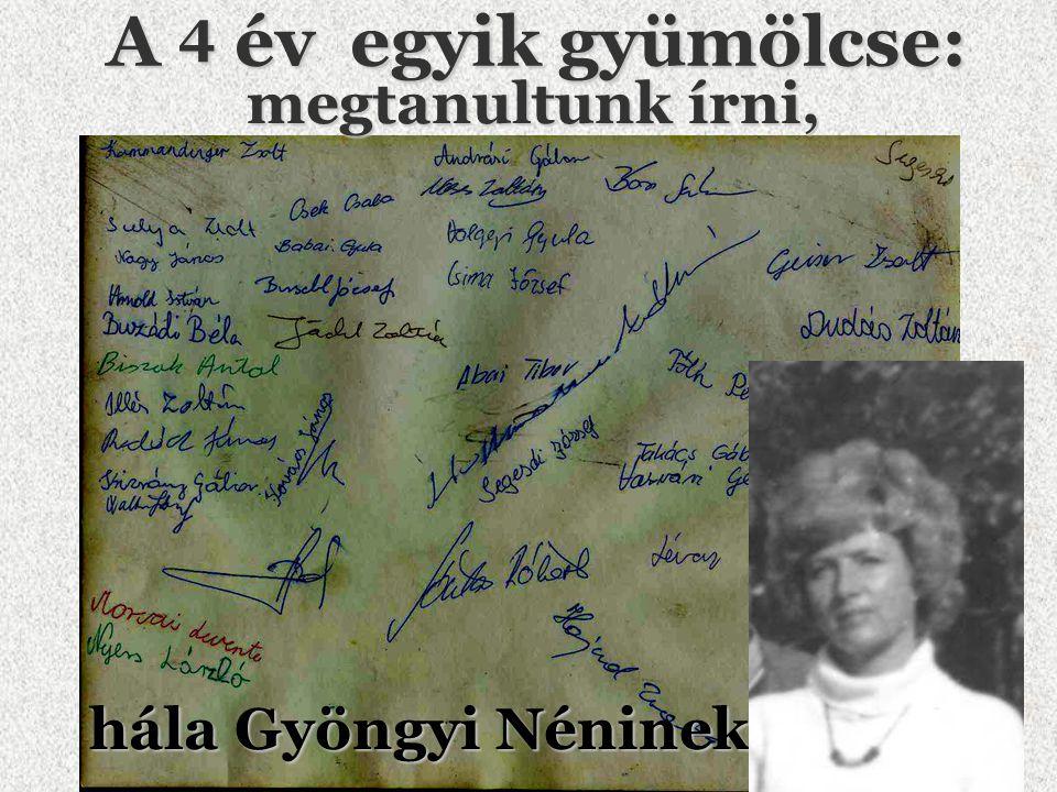 Buzádi Béla alias: Bélus 1980 1984