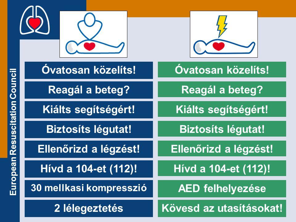 European Resuscitation Council Hívd a 104-et (112)! Óvatosan közelíts! Reagál a beteg? Kiálts segítségért! Biztosíts légutat! Ellenőrizd a légzést! AE
