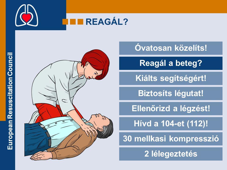 European Resuscitation Council LÉLEGEZTETÉS •Fogd be az orrát.