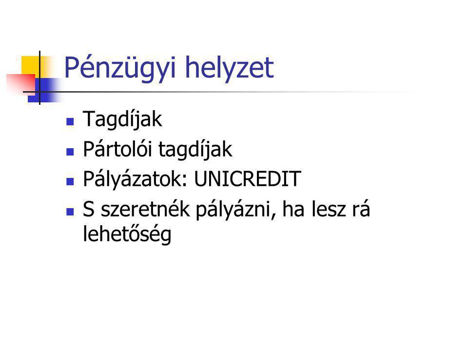 Pénzügyi helyzet  Tagdíjak  Pártolói tagdíjak  Pályázatok: UNICREDIT  S szeretnék pályázni, ha lesz rá lehetőség