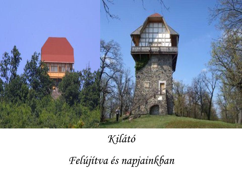 Szintén a grófnő készíttette a 446 méter magas Fekete- hegy (Sasbérc) csúcsára ezt a négyemeletes, négyszög alaprajzú kilátótornyot is, amely amellett