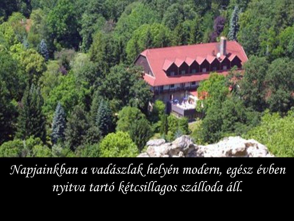 A Báthoryak maradtak a vár urai egészen 1552 – ig, amikor a törökök könnyedén elfoglalták az őrség egy részének éjszakai elmenekülése miatt.