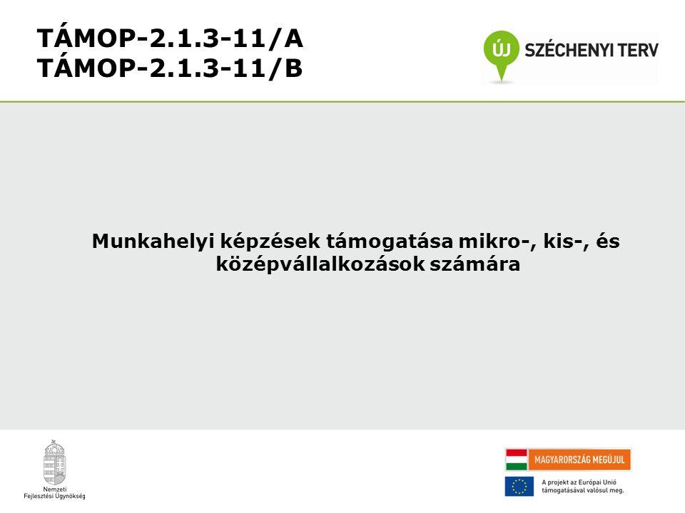 Munkahelyi képzések támogatása mikro-, kis-, és középvállalkozások számára TÁMOP-2.1.3-11/A TÁMOP-2.1.3-11/B