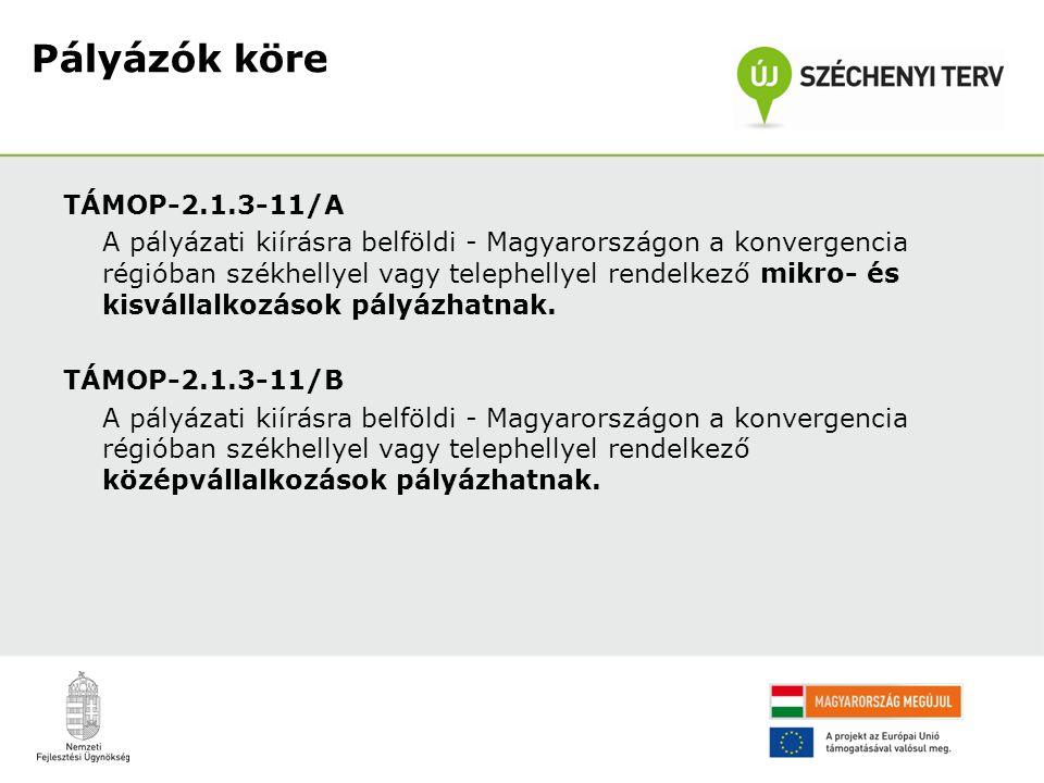 TÁMOP-2.1.3-11/A A pályázati kiírásra belföldi - Magyarországon a konvergencia régióban székhellyel vagy telephellyel rendelkező mikro- és kisvállalko