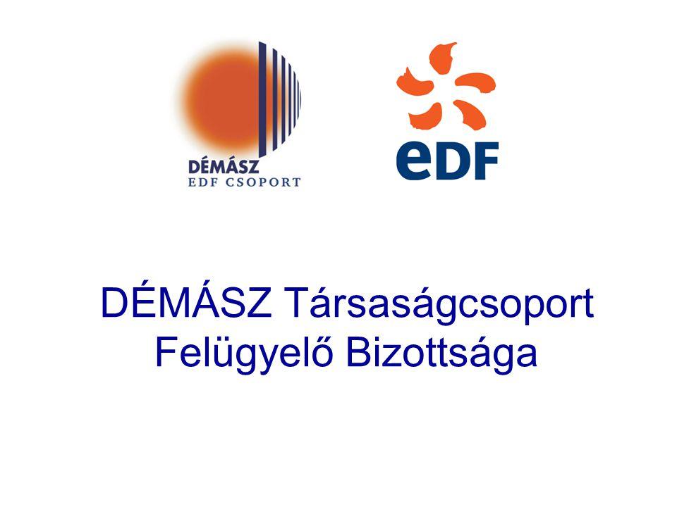 A társaságcsoport felépítése DÉMÁSZ Zrt.EdF Energia Hungária Kft.