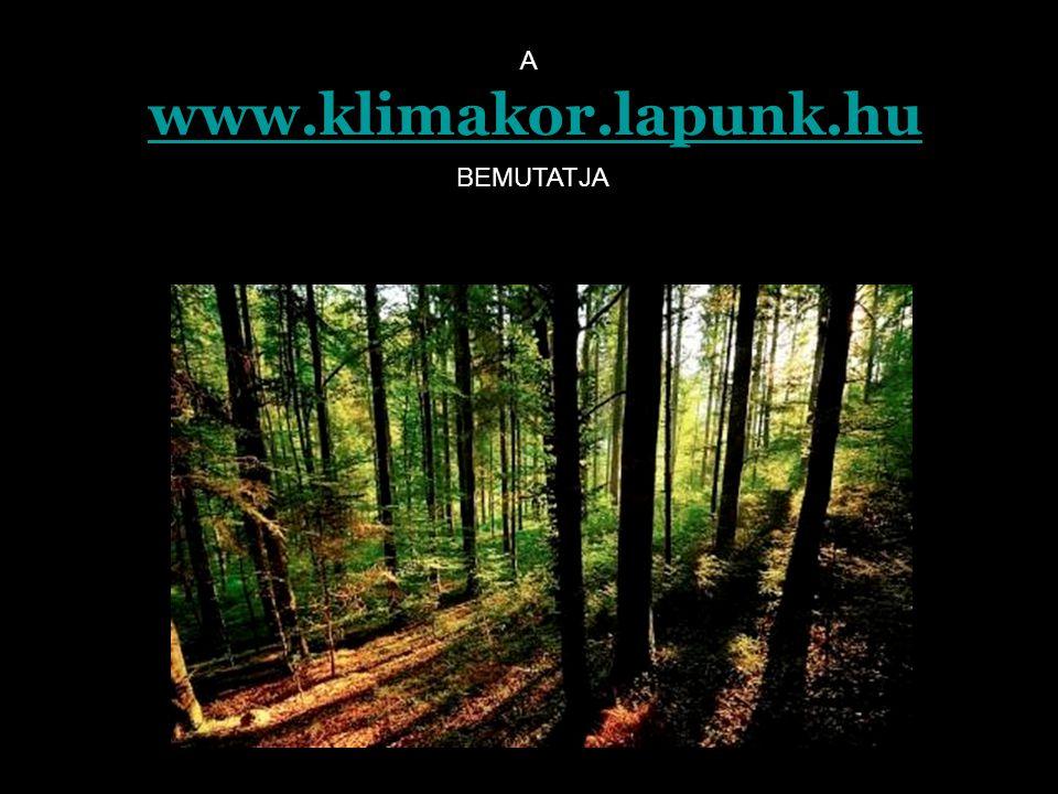 www.klimakor.lapunk.hu BEMUTATJA A