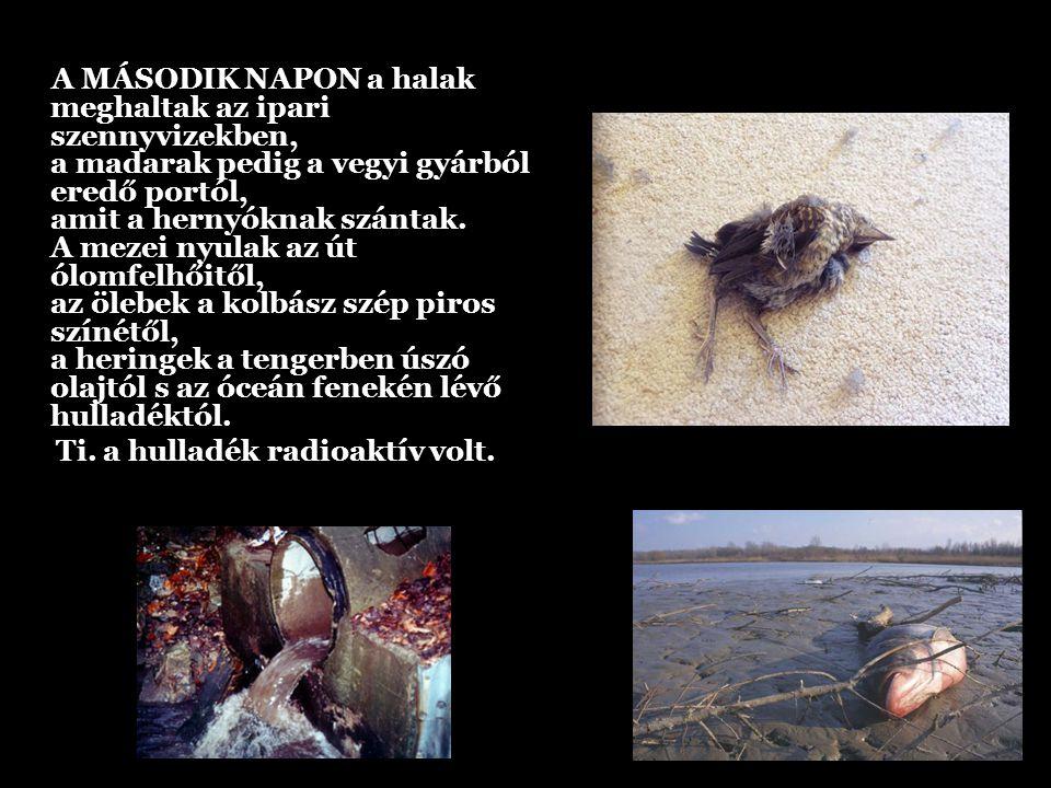 A MÁSODIK NAPON a halak meghaltak az ipari szennyvizekben, a madarak pedig a vegyi gyárból eredő portól, amit a hernyóknak szántak.