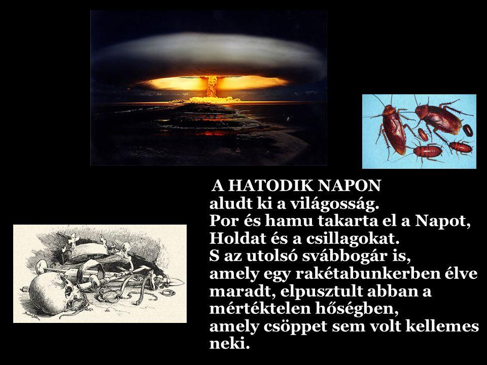 AZ ÖTÖDIK NAPON megnyomták az utolsó emberek a piros gombot, mert fenyegetve érezték magukat.