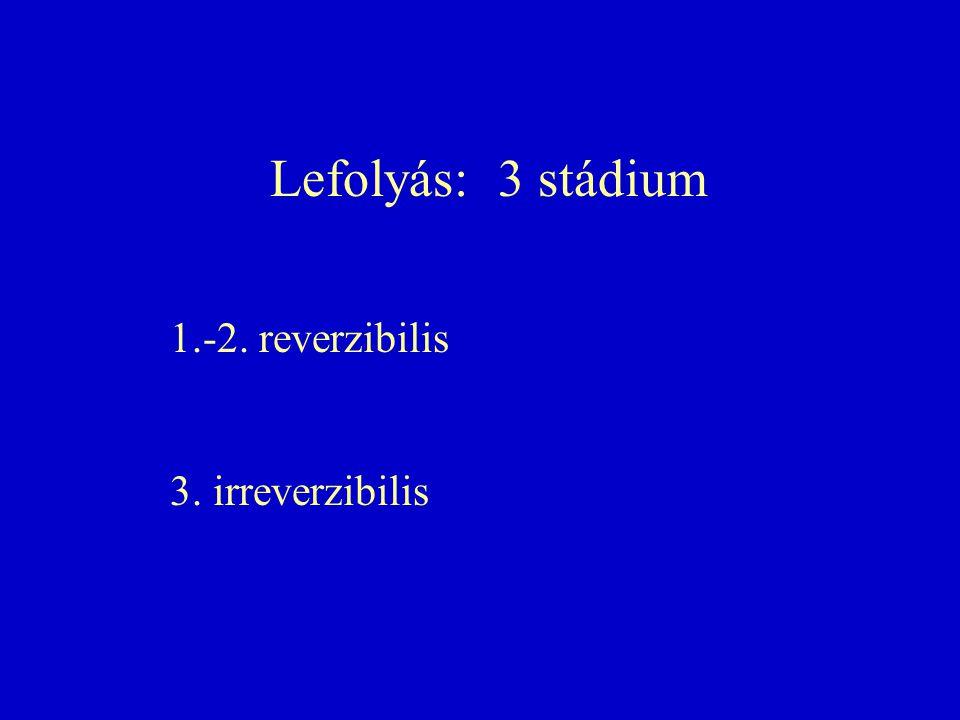 Lefolyás: 3 stádium 1.-2. reverzibilis 3. irreverzibilis
