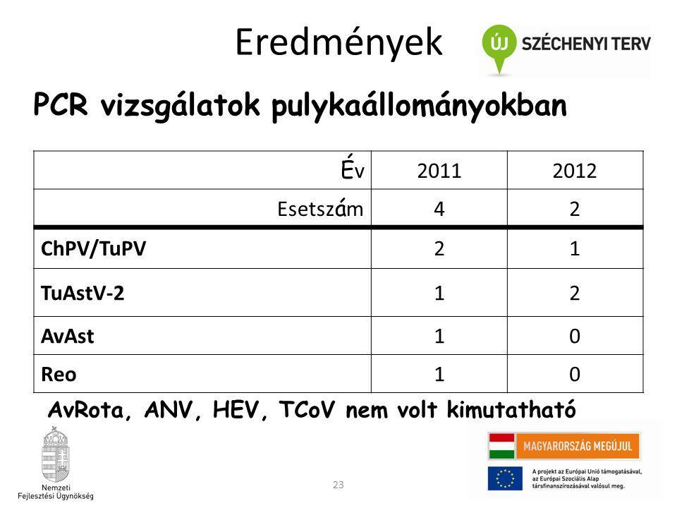 23 Eredmények PCR vizsgálatok pulykaállományokban ÉvÉv 20112012 Esetsz á m 42 ChPV/TuPV21 TuAstV-212 AvAst10 Reo10 AvRota, ANV, HEV, TCoV nem volt kim