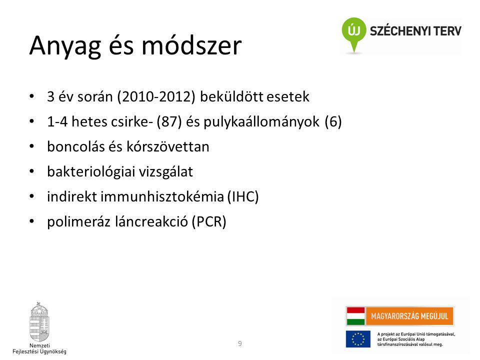9 Anyag és módszer • 3 év során (2010-2012) beküldött esetek • 1-4 hetes csirke- (87) és pulykaállományok (6) • boncolás és kórszövettan • bakteriológ