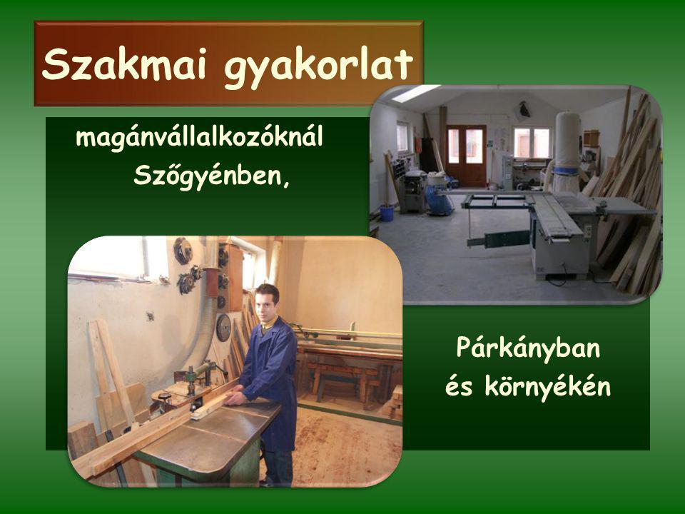 Szakmai gyakorlat magánvállalkozóknál Szőgyénben, Párkányban és környékén