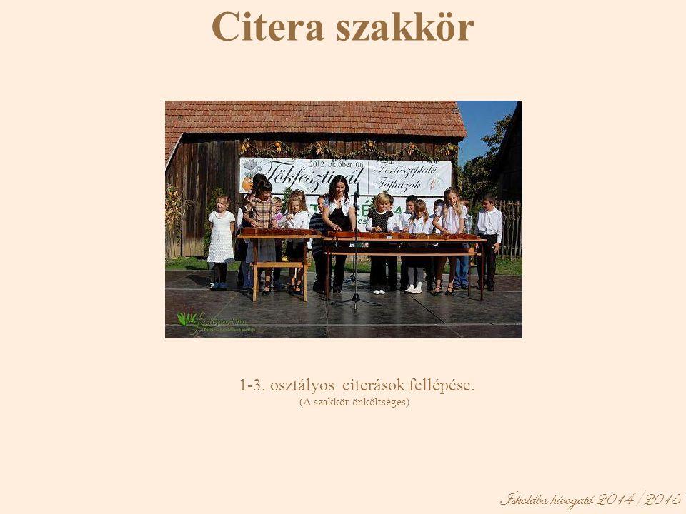 Iskolába hívogató 2014/2015 Citera szakkör 1-3. osztályos citerások fellépése. (A szakkör önköltséges)