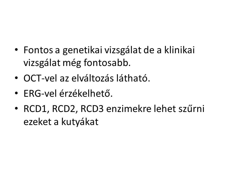 • Fontos a genetikai vizsgálat de a klinikai vizsgálat még fontosabb. • OCT-vel az elváltozás látható. • ERG-vel érzékelhető. • RCD1, RCD2, RCD3 enzim