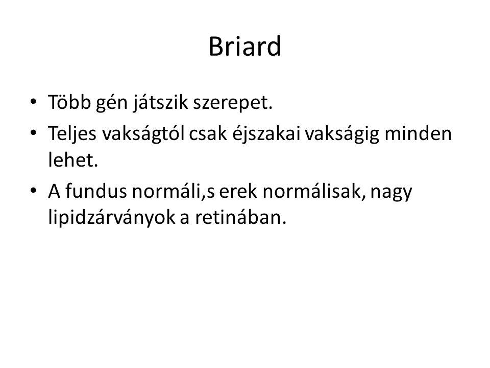 Briard • Több gén játszik szerepet. • Teljes vakságtól csak éjszakai vakságig minden lehet. • A fundus normáli,s erek normálisak, nagy lipidzárványok