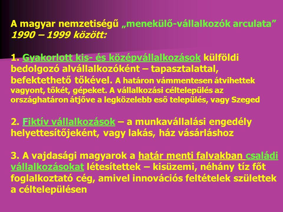 """A magyar nemzetiségű """"menekülő-vállalkozók arculata 1990 – 1999 között: 1."""