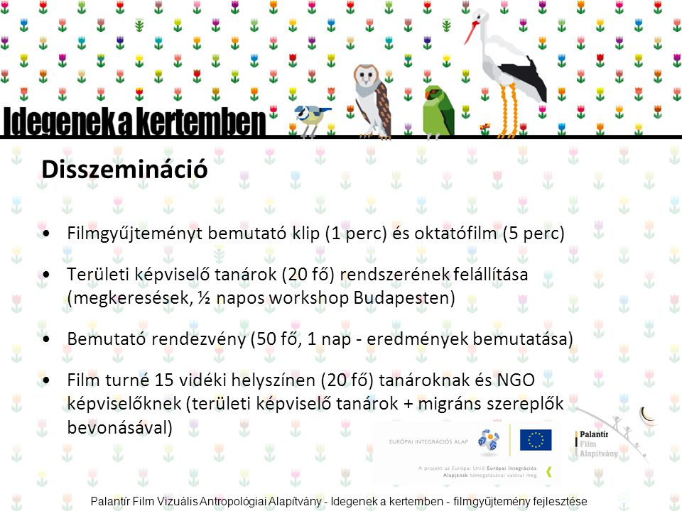 Disszemináció •Filmgyűjteményt bemutató klip (1 perc) és oktatófilm (5 perc) •Területi képviselő tanárok (20 fő) rendszerének felállítása (megkeresések, ½ napos workshop Budapesten) •Bemutató rendezvény (50 fő, 1 nap - eredmények bemutatása) •Film turné 15 vidéki helyszínen (20 fő) tanároknak és NGO képviselőknek (területi képviselő tanárok + migráns szereplők bevonásával) Palantír Film Vizuális Antropológiai Alapítvány - Idegenek a kertemben - filmgyűjtemény fejlesztése