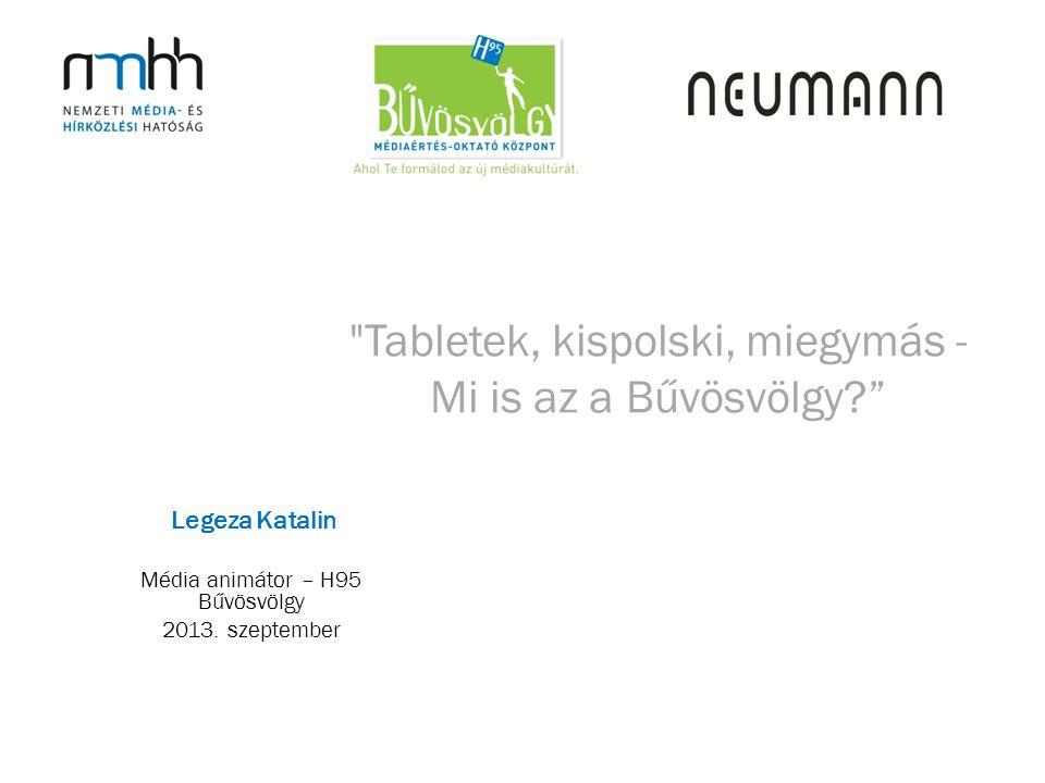 Tabletek, kispolski, miegymás - Mi is az a Bűvösvölgy Média animátor – H95 Bűvösvölgy 2013.
