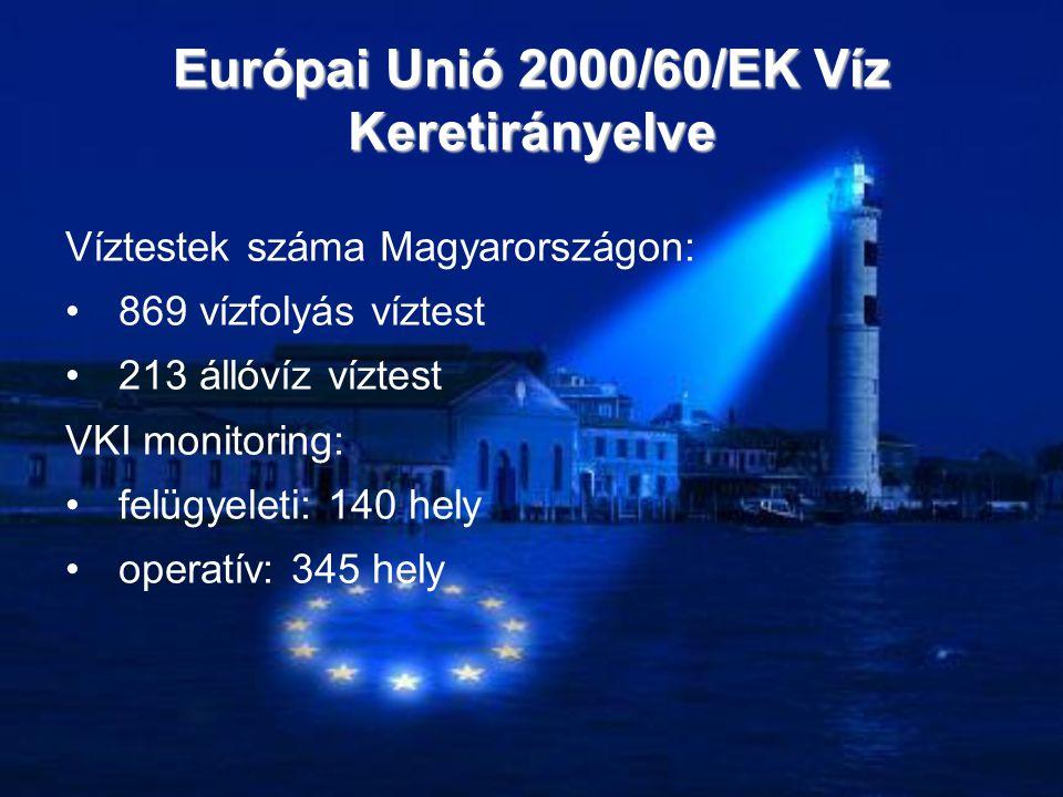 Víztestek száma Magyarországon: •869 vízfolyás víztest •213 állóvíz víztest VKI monitoring: •felügyeleti: 140 hely •operatív: 345 hely Európai Unió 20