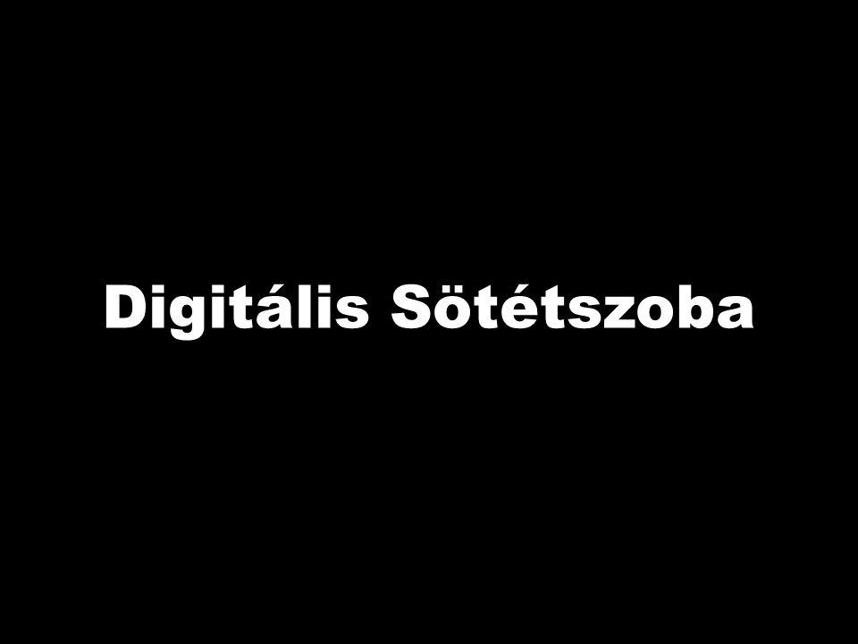 Digitális Sötétszoba Adobe Photoshop CS5 Extended v12.0 Fotószakkör 2011/1. Digitális Sötétszoba A digitális fotó utómunkája.