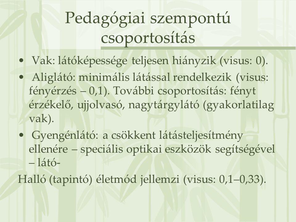 Pedagógiai szempontú csoportosítás • Vak: látóképessége teljesen hiányzik (visus: 0). • Aliglátó: minimális látással rendelkezik (visus: fényérzés – 0