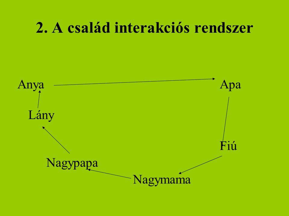 2. A család interakciós rendszer AnyaApa Lány Fiú Nagypapa Nagymama