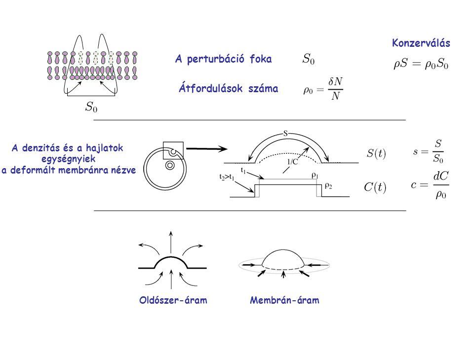 A perturbáció foka Átfordulások száma Konzerválás A denzitás és a hajlatok egységnyiek a deformált membránra nézve Oldószer-áramMembrán-áram