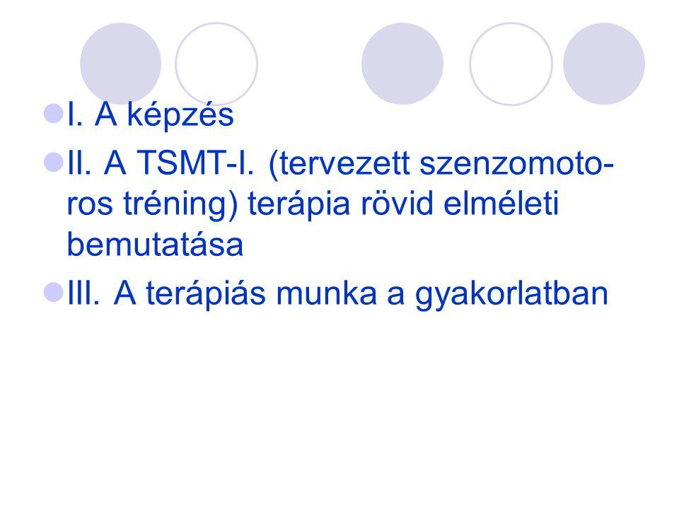  I. A képzés  II. A TSMT-I. (tervezett szenzomoto- ros tréning) terápia rövid elméleti bemutatása  III. A terápiás munka a gyakorlatban