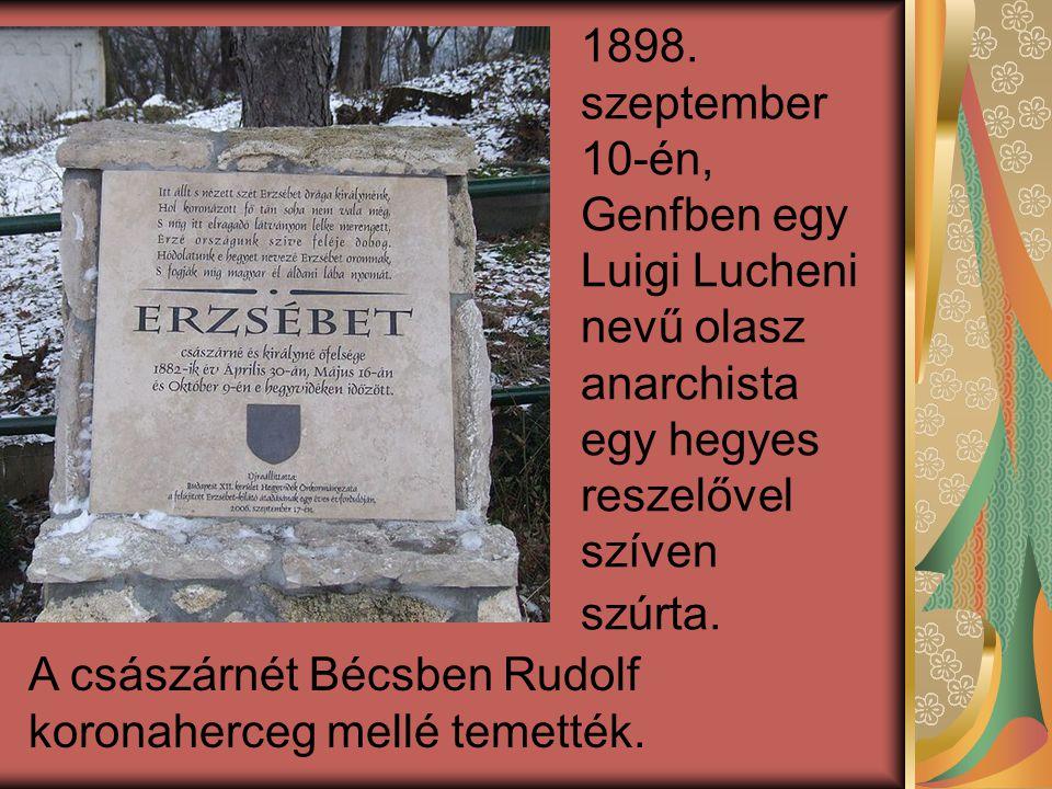 1898. szeptember 10-én, Genfben egy Luigi Lucheni nevű olasz anarchista egy hegyes reszelővel szíven szúrta. A császárnét Bécsben Rudolf koronaherceg