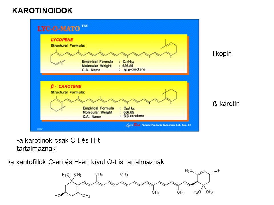 KAROTINOIDOK likopin ß-karotin •a karotinok csak C-t és H-t tartalmaznak •a xantofillok C-en és H-en kívül O-t is tartalmaznak