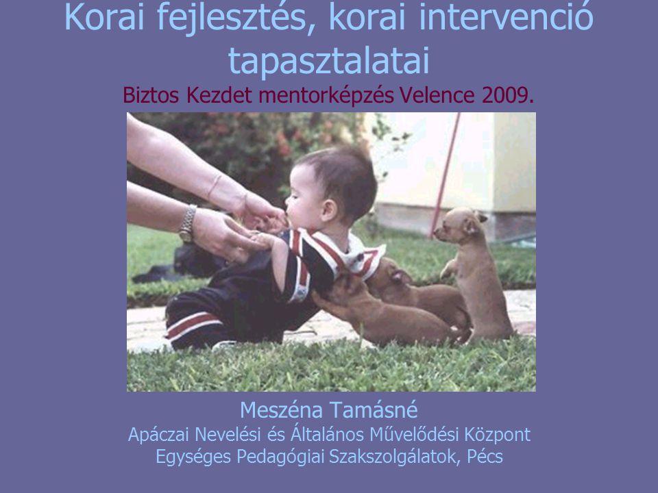 Korai fejlesztés, korai intervenció tapasztalatai Biztos Kezdet mentorképzés Velence 2009.