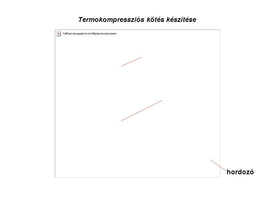 Termokompressziós kötés készítése 25,4 µm-es Au huzal kapilláris hordozó