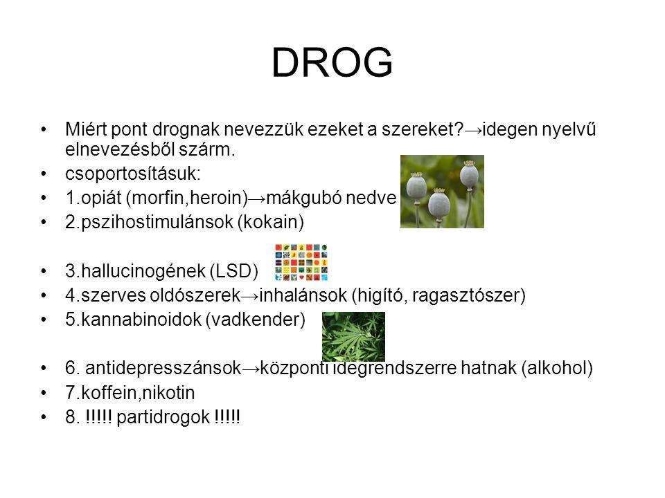 DROG •Miért pont drognak nevezzük ezeket a szereket?→idegen nyelvű elnevezésből szárm. •csoportosításuk: •1.opiát (morfin,heroin)→mákgubó nedve •2.psz