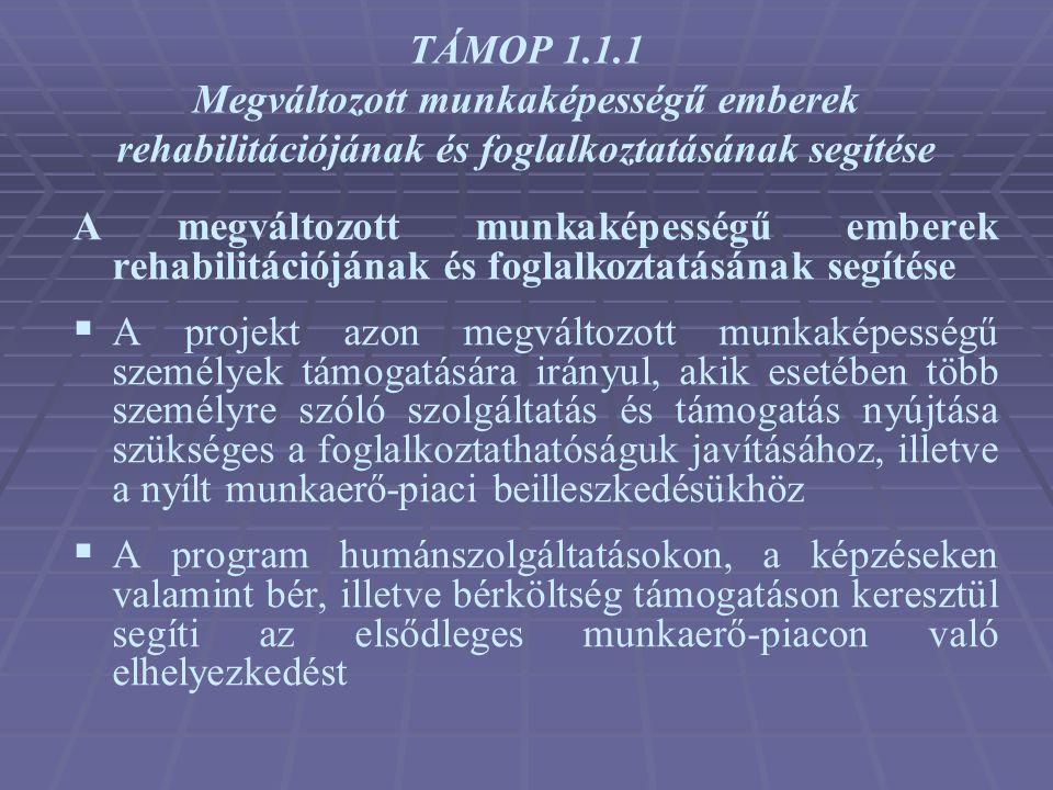 TÁMOP 1.1.1 Megváltozott munkaképességű emberek rehabilitációjának és foglalkoztatásának segítése A megváltozott munkaképességű emberek rehabilitációj