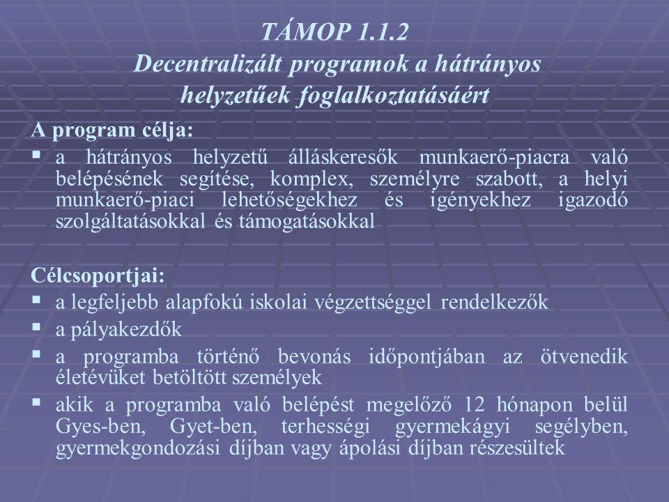 TÁMOP 1.1.2 Decentralizált programok a hátrányos helyzetűek foglalkoztatásáért A program célja:  a hátrányos helyzetű álláskeresők munkaerő-piacra va