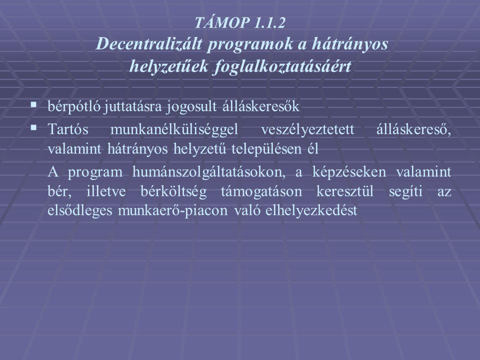 TÁMOP 1.1.2 Decentralizált programok a hátrányos helyzetűek foglalkoztatásáért  bérpótló juttatásra jogosult álláskeresők  Tartós munkanélküliséggel