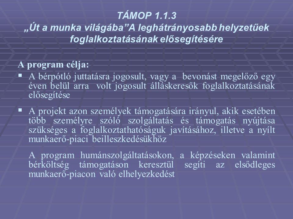 """TÁMOP 1.1.3 """"Út a munka világába""""A leghátrányosabb helyzetűek foglalkoztatásának elősegítésére A program célja:  A bérpótló juttatásra jogosult, vagy"""