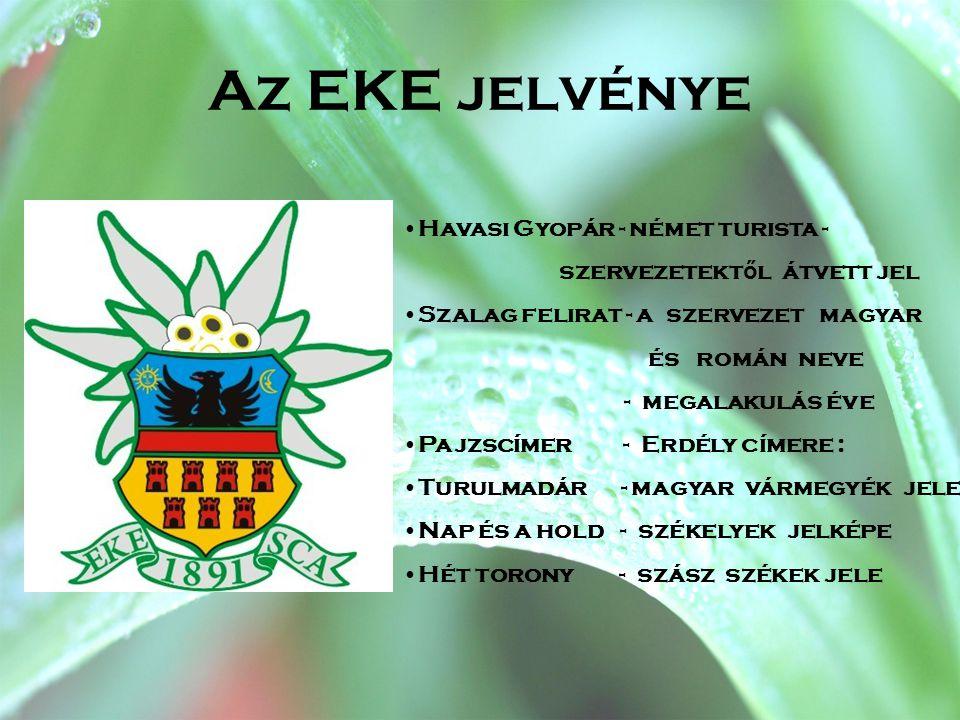 Az EKE jelvénye •Havasi Gyopár - német turista - szervezetekt ő l átvett jel •Szalag felirat - a szervezet magyar és román neve - megalakulás éve •Paj